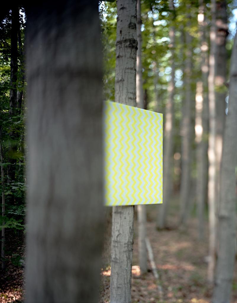 WoodWork#2,2014.jpg