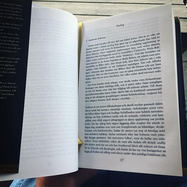 Vad ska du läsa i sommar? Kanske samtliga böcker i serien Härskarringen? Eller något helt annat? På LoveStory.nu skriver redaktionen om vad vi läser i sommar! ☀️📕