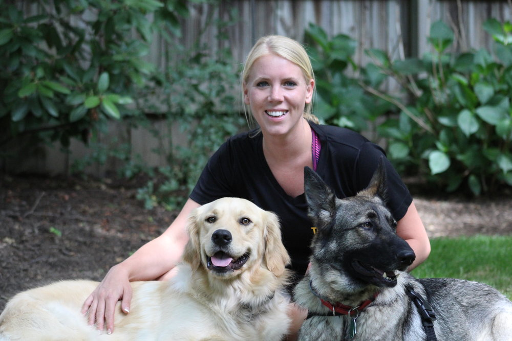 Pittsburgh, PA In-home adult dog trainer