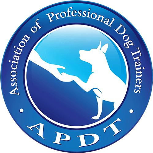 APDT Logo.png