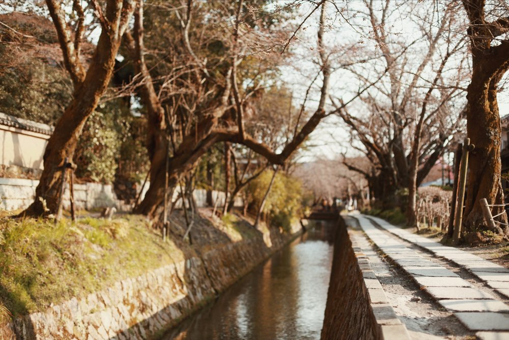 A Two-Day Kyoto Itinerary | Guide to Japan | & Away We Went | #Travel Blog | #Wanderlust