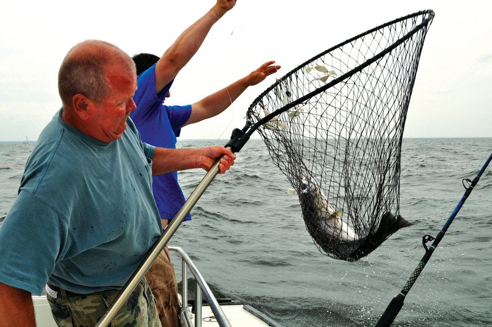 2017 fishing tournament calendar chesapeake bay magazine for Fishing tournaments 2017