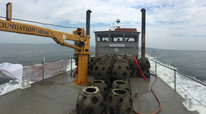 Reef balls were first deployed in 2016. Photo: CCA Maryland