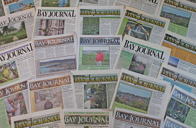 bayjournal.com