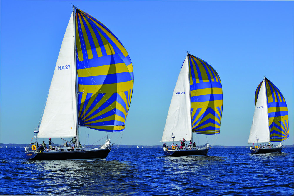 Navy 44s going downwind. Photo by by Ann Levelle.
