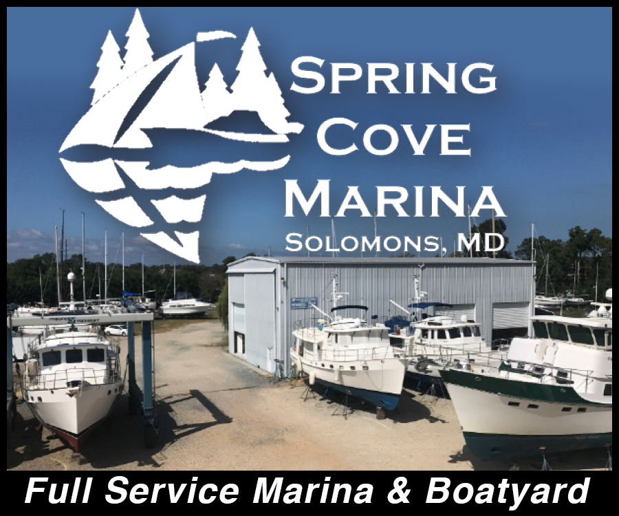 Spring-Cove-WEB1117.png
