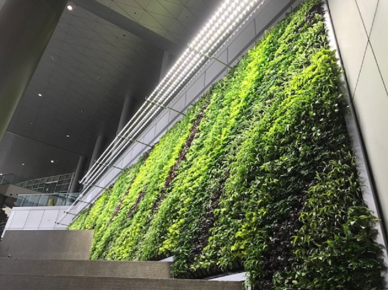 One of Greenstreet GreenWalls' installations