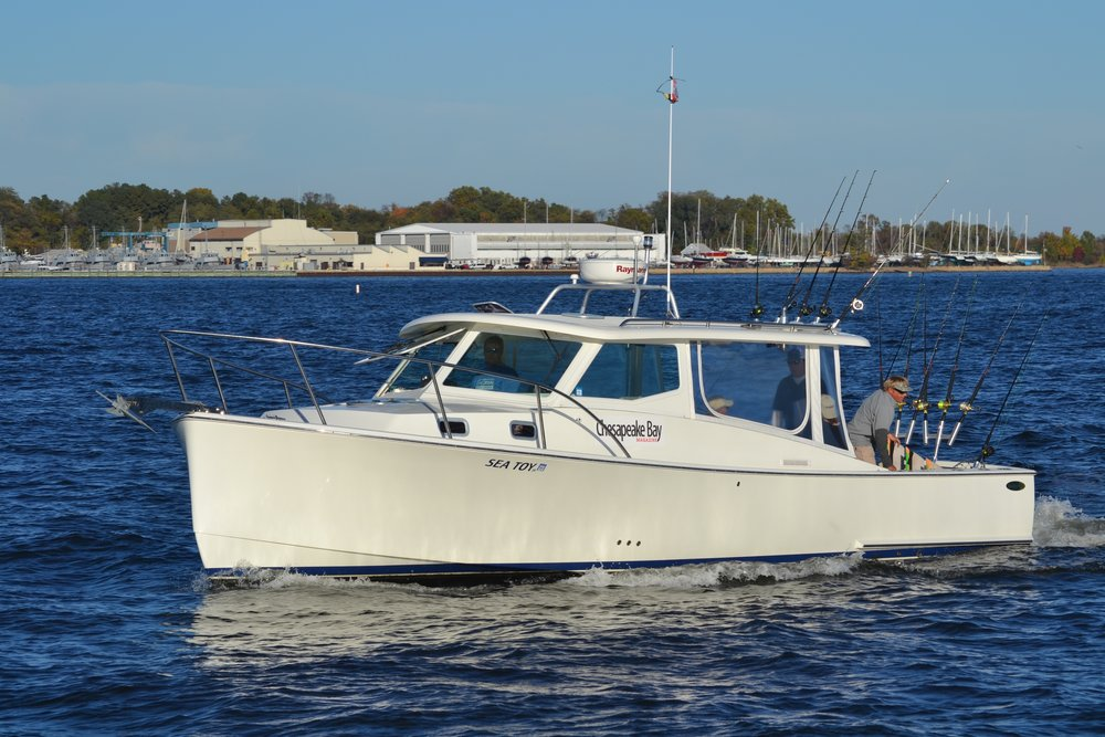 fish for a cure cbm boat.jpg