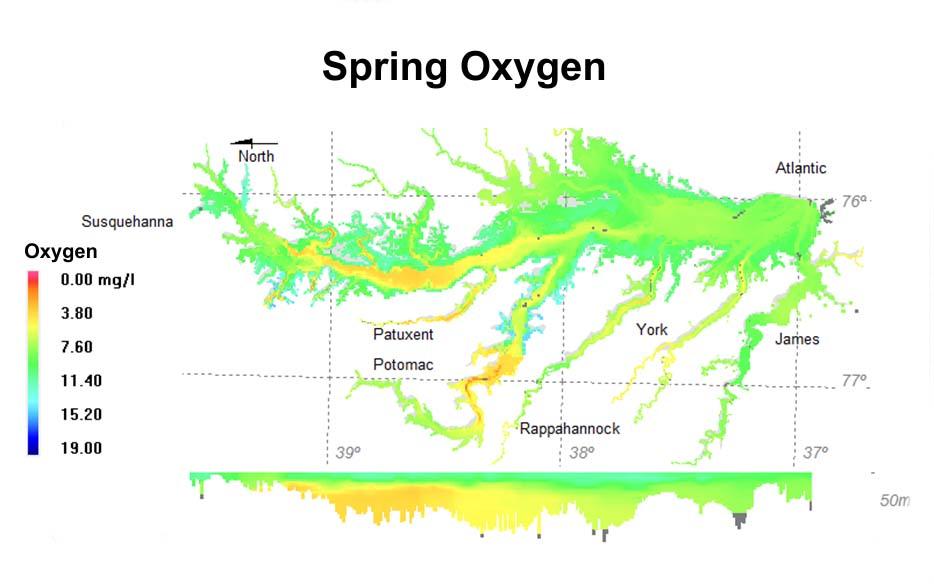 Spring oxygen.jpg