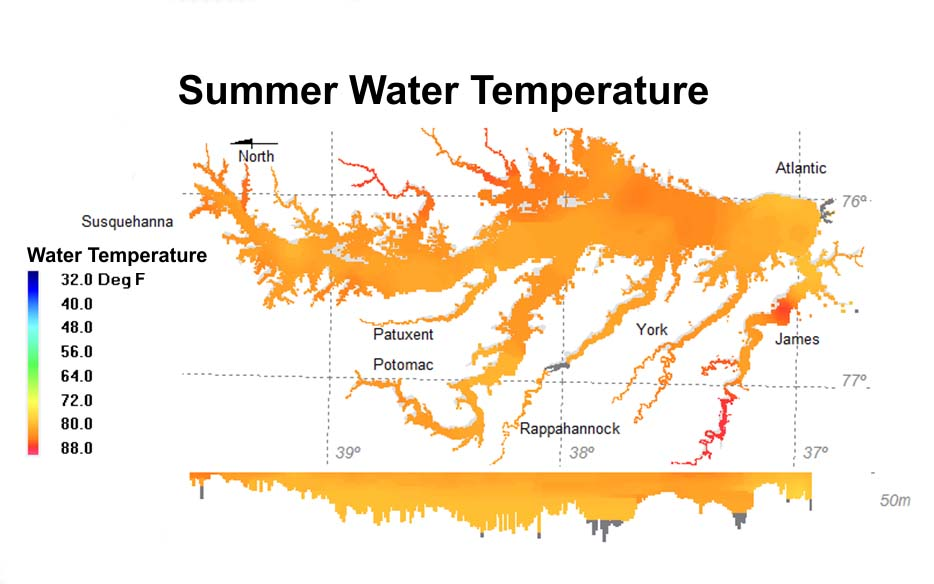 Summer water temperature.jpg