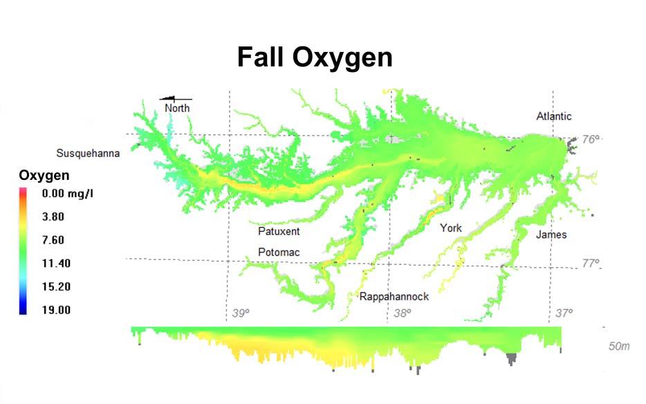 Fall oxygen.jpg