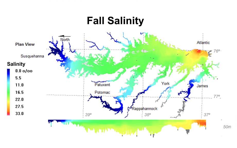 Fall salinity.jpg