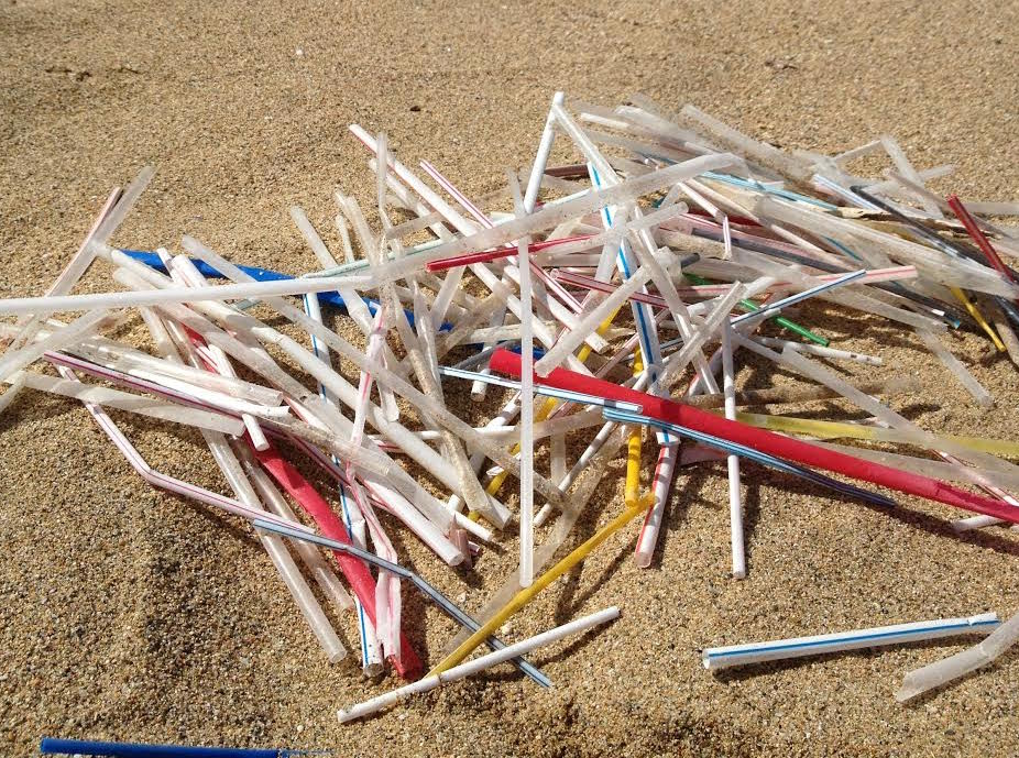 plastic straw pollution.jpg