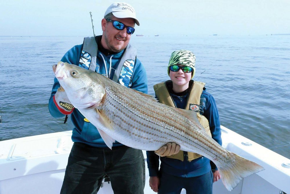 Striped Bass  Photo by Brian Zagalsky/courtesy md Dnr