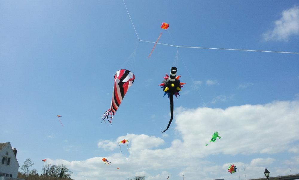 kite days 2.jpg