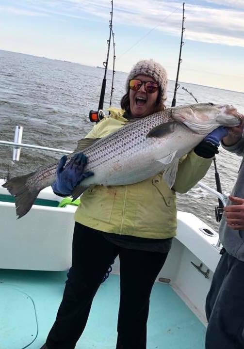 """On Sunday morning,while fishing with Capt. Matt Marceron aboard the charter boat U.S. Blues out of the South River,Cathy Rice Anders landed this gorgeous 44"""" rockfish that was fooled by a red, white and blue 2-ounce Alien head parachute tied by Jim Bieler, owner of Marty's Bait & Tackle in Edgewater, MD.(Courtesy of U..S Blues)"""