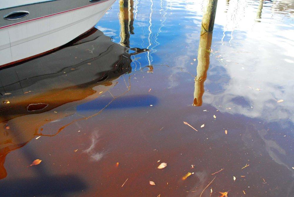 Chesapeake Bay Program photos