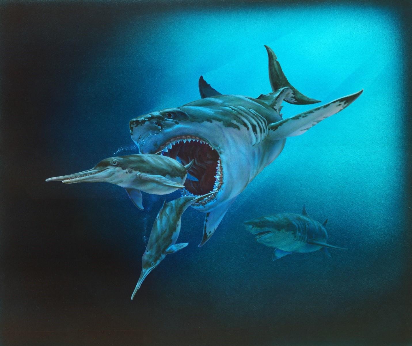 megalodon cápafog karbon társkereső társkereső oldalak odessa ukraine