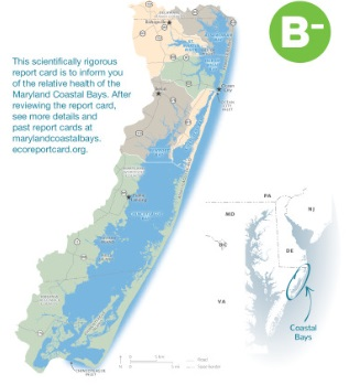 Maryland's Coastal Bays receive a B-minus grade for the first time.