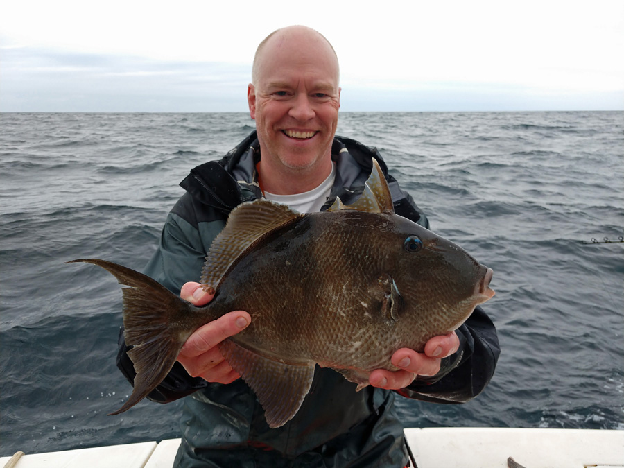 Dr. Hamish Small, a scientist at VIMS by way of Scotland, with a portly triggerfish caught recently on a wreck off the Virginia coast. (Photo courtesy Dr. Ken Neill III)