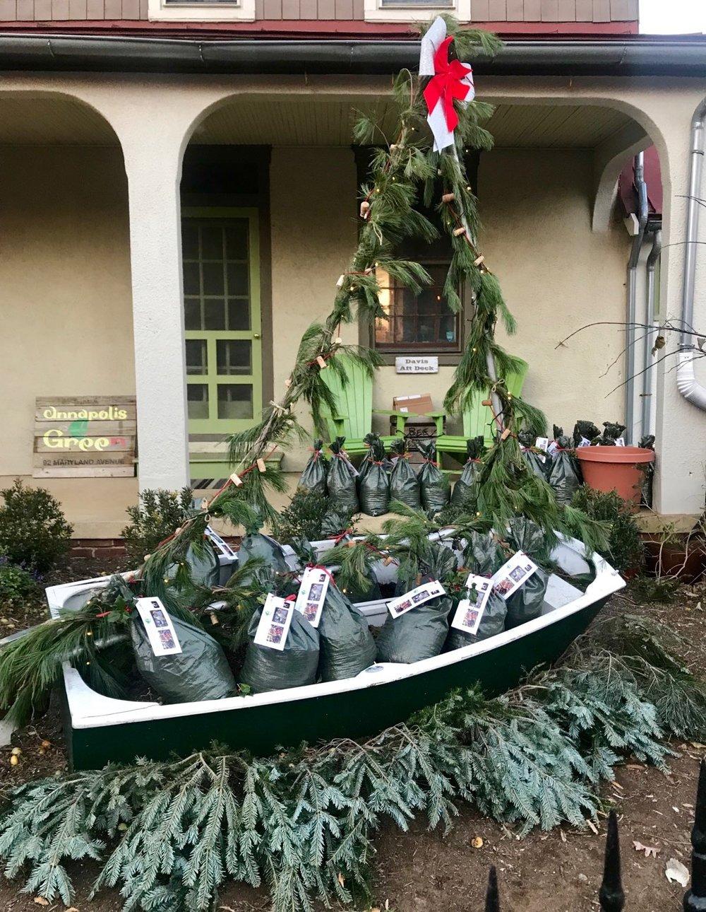 A festive display of Christmas Crab Compost