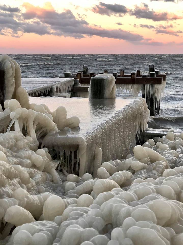 A dock in Deal Island, totally iced over on Monday morning. Photo: Carrie Samis