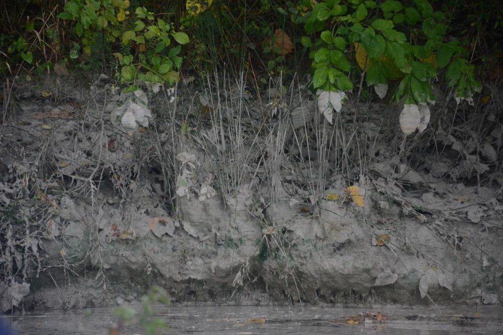 Cenospheres— silica waste commonly found in coal ash— are visible along the shoreline of the James River. Photo: James River Association