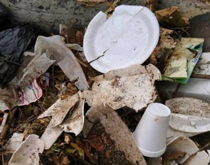 Photo: Trash Free Maryland