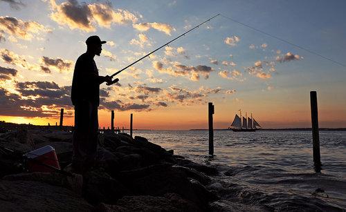 Photo: Virginia Sea Grant
