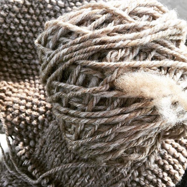Three ply spun on trindles (drop spindles) and plies on a Turkish spindle. Made with natural, undyed wool. #51yarns #plymagazine #spinnersofinstagram #spinningyarn #handspunyarn
