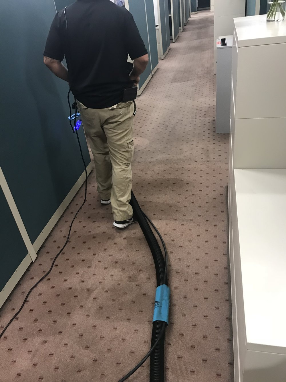 Rotary Extraction Cleaning Method (carpet has not been properly cleaned for 10+ years)