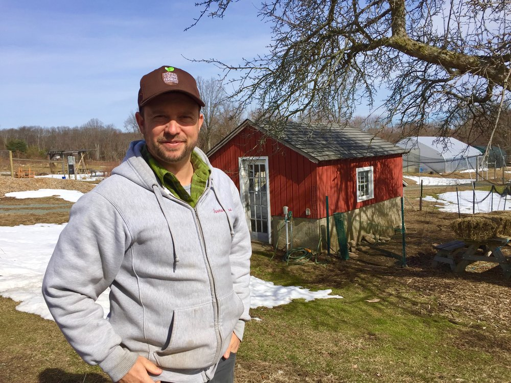 A sunny and strangely warm February day with Farmer Steve Munno of The Massaro Community Farm in Woodbridge, CT just minutes from the city of New Haven.
