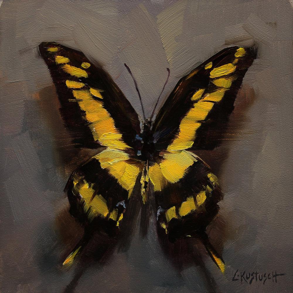The Giant Swallowtail