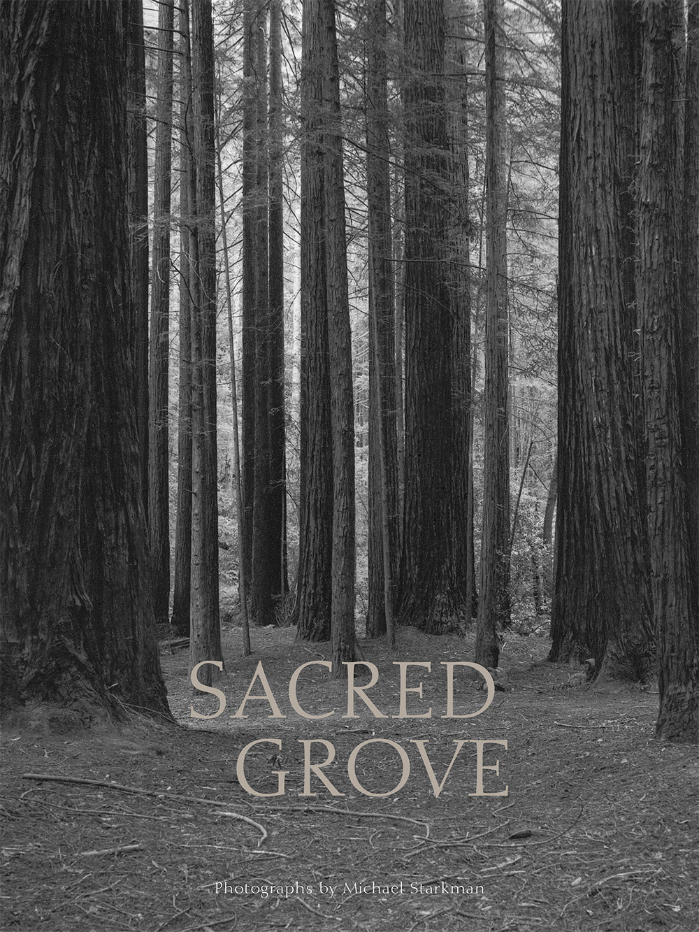 SacredGrove_cover.jpg