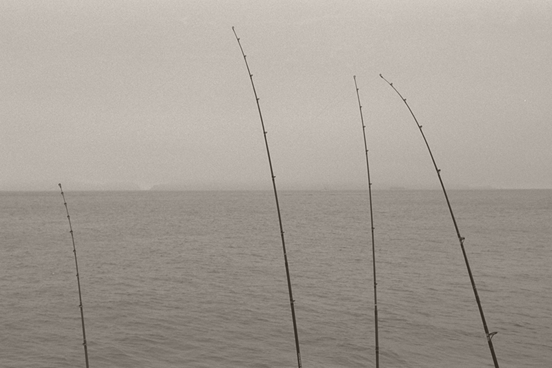 Four Fishing Poles