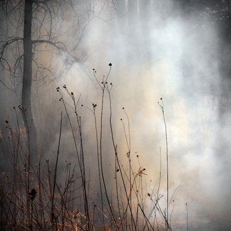 Jane Fulton Alt, The Burn No. 99