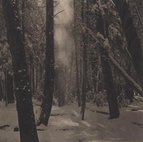 Takeshi Shikama, Yosemite #6