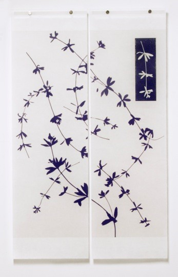 Jeri Eisenberg Weeds No. 2 Reversed (With Original Inset)