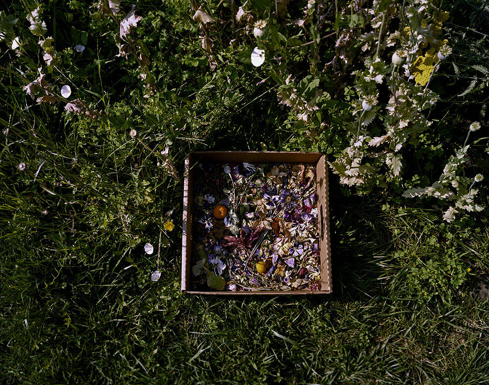Dried Flower Box
