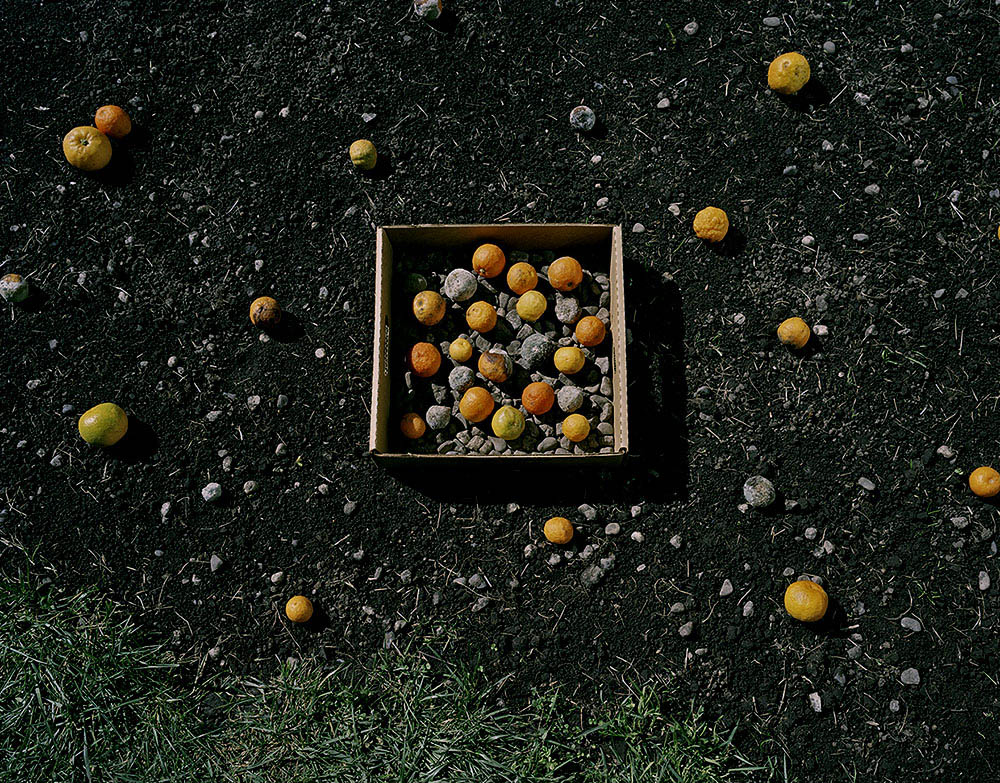 Oranges and Stones