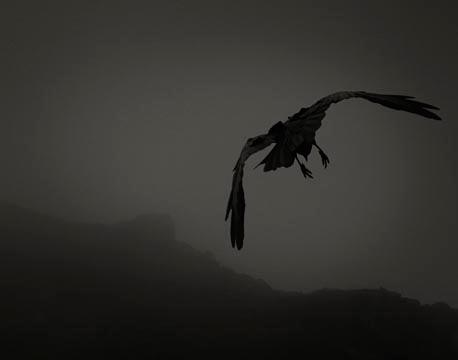 Odin's Cove #6