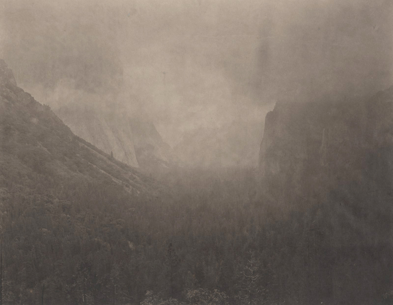 Silent Respiration of Forests — Yosemite #1