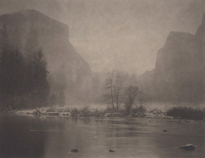 Silent Respiration of Forests — Yosemite #17