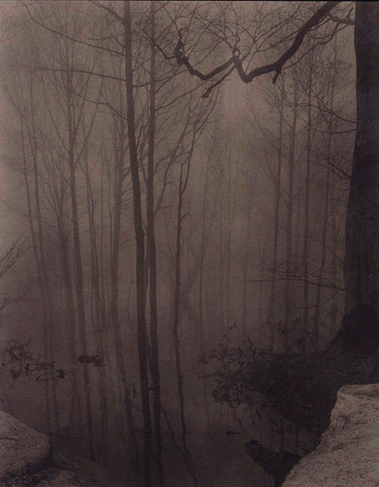 Takeshi Shikama, Silent Respiration of Forests and Evanescence — Lotus, 2010–2011