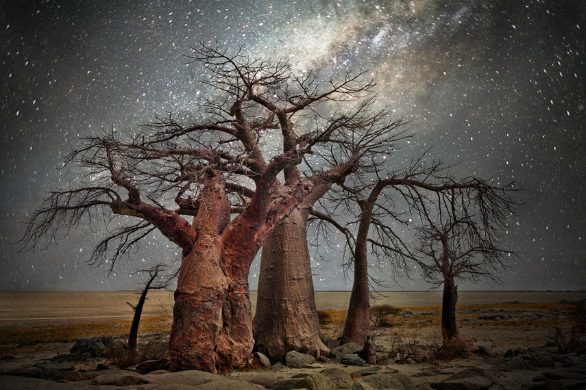 Beth Moon, Diamond Nights, Volans