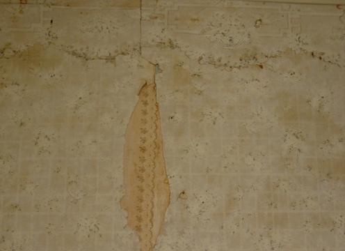 Finding Wyeth 12