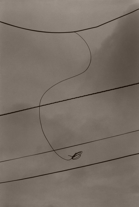Max Kellenberger, Loose Wire