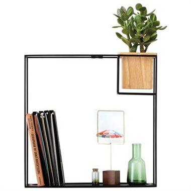 ubmra shelf