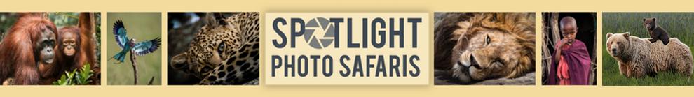 SPS Logo_Website_header_NEW.png