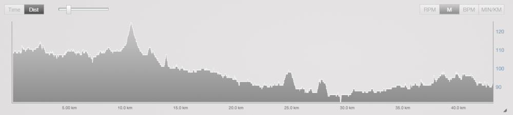 Frankfurt Marathon course profile